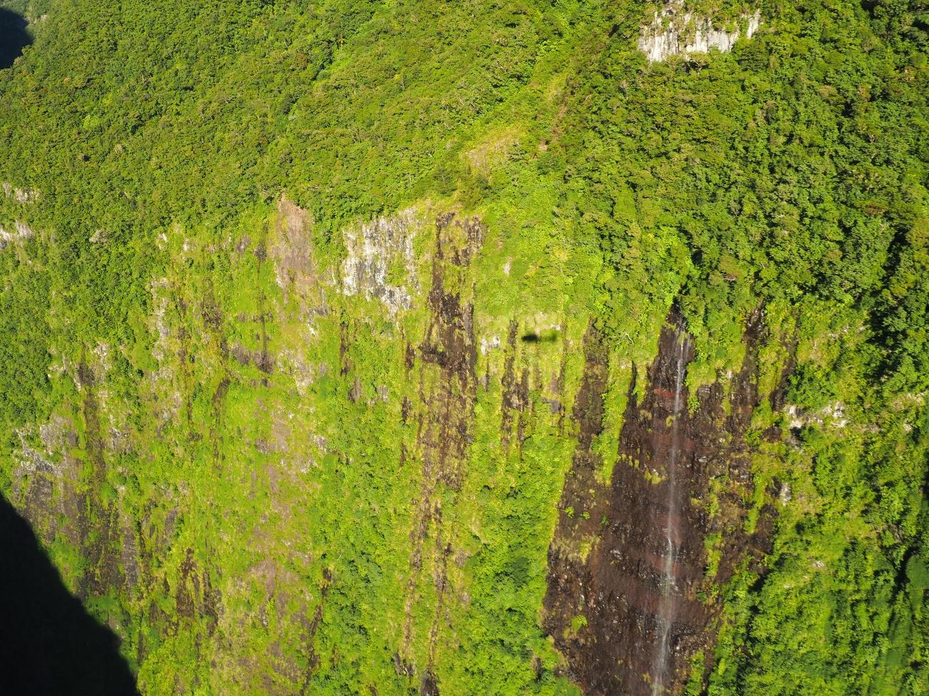 En direction du Trou de Fer à la Réunion