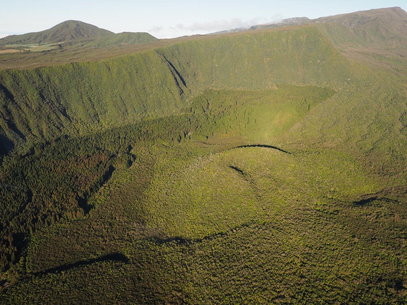 La forêt de Bébour Bélouve vue depuis l'hélicoptère à la Réunion