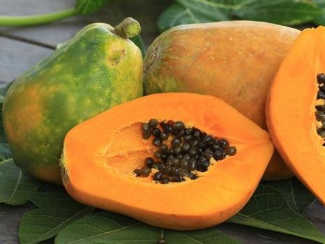 la papaye à la réunion