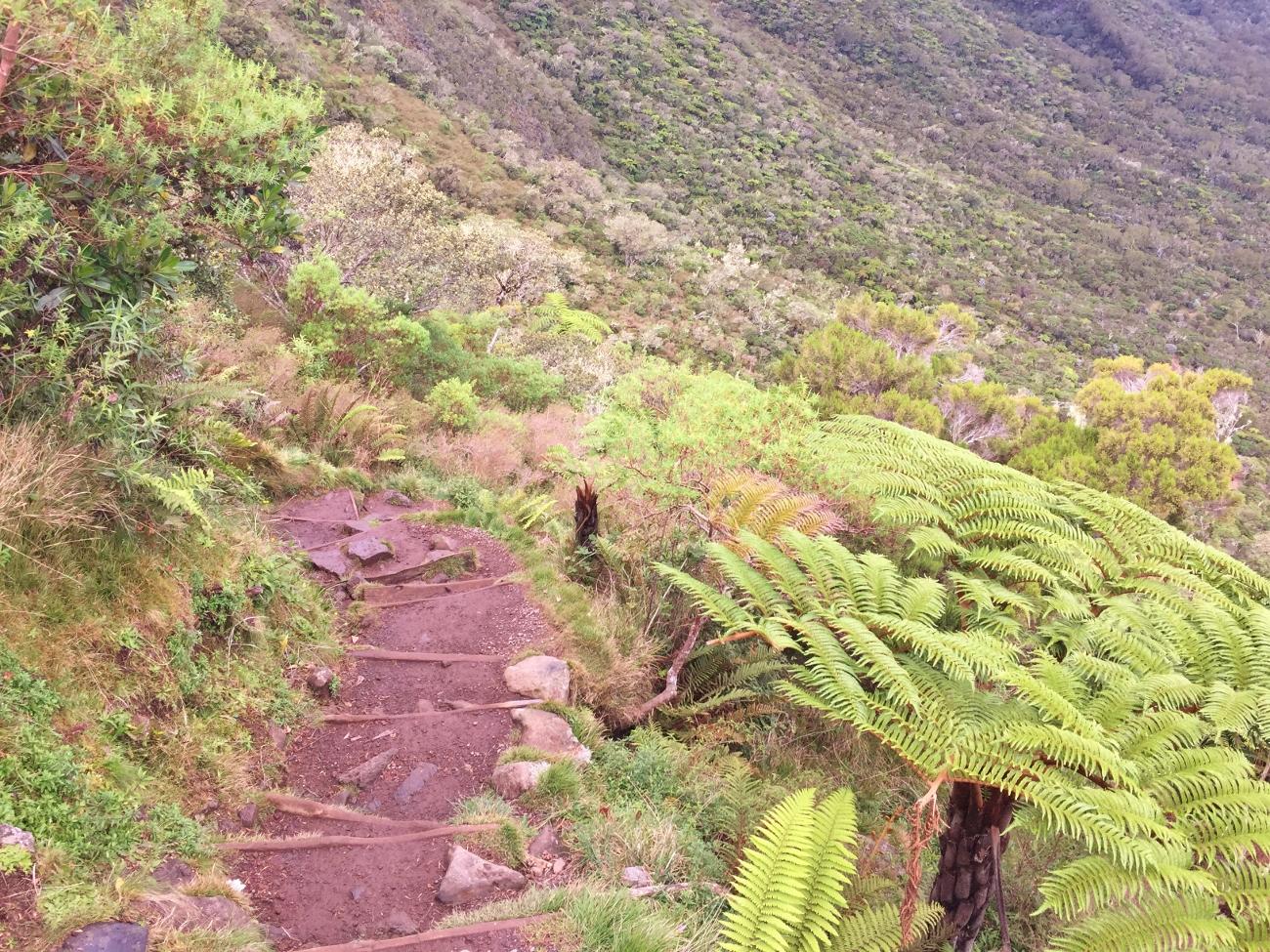 Les marches du sentier partant du col des boeufs pour Marla ou La Nouvelle